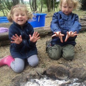 Woodland Warriors - Summer Holidays 2015