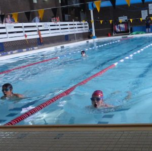 Wharfedale Montessori School Swimming gala in full flow